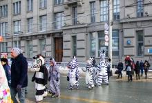 Внимание!Зебры в городе!