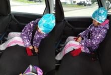 Сел в машину -пристегнись!