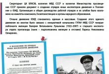 Официальная дата создания ЮИД в РФ