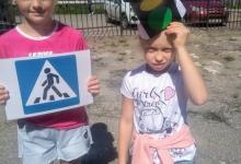 «Международный день светофора». Сотрудники ГИБДД Скопинского района напомнили детям и взрослым основы Правил дорожного движения