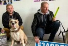 В Московской области автоинспекторы провели для владельцев домашних животных акции «Засветись!»