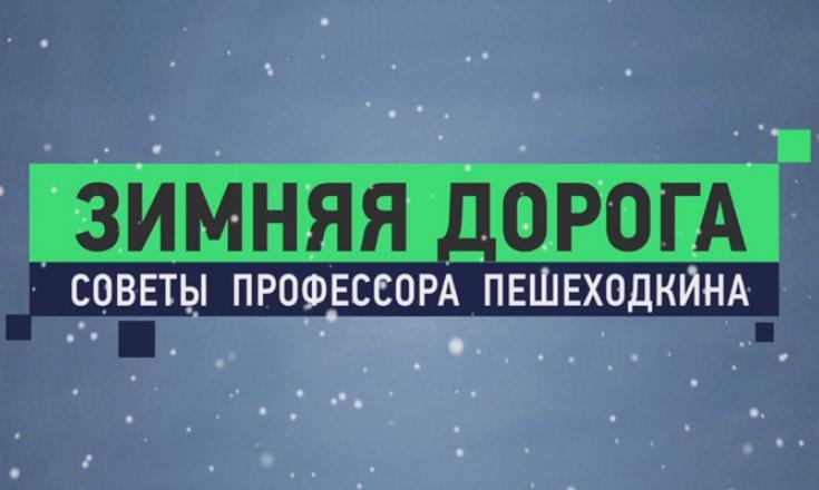 Профессор Пешеходкин - Зимняя дорога